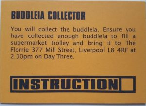 Buddleia Collector - Nick King